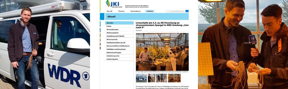 Interview, Arne Garlipp, Das Erste, ARD, WDR, zur Züchtung von resistenten Spagelpflanzen