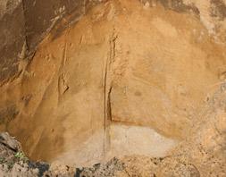 Das besondere Merkmal ist der feine weiße Sand unter dem Mutterboden. Sand, so weiß und rein, wie man ihn an der Ostsee findet. Dies gibt unserem Spargel seinen Geschmack.